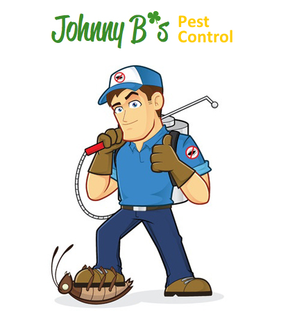 Stop Pests This Winter | Johnny B's Pest Control